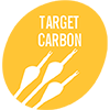 Flechas Carbono Target